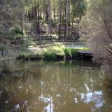 Winter waters at Hovea